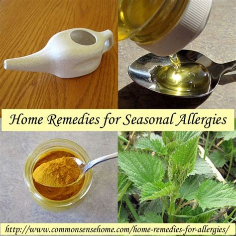 herbal remedies for allergies picture 3