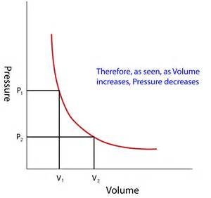 boils law picture 1