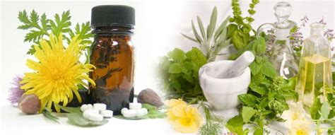 herbal cures picture 17