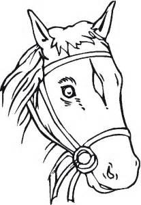 relief cu cai picture 6