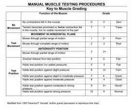 how to muscle test picture 3