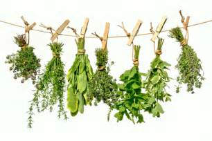 d. a traditional herbs rubbed on the penis. picture 11