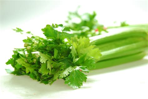 High blood pressure celery picture 7