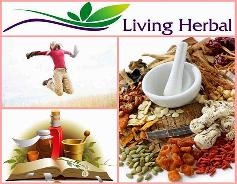herbal business trends picture 3