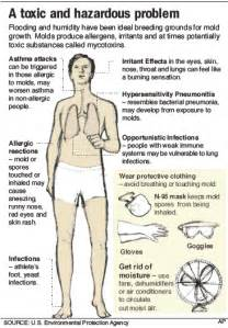 side effects of puting on the mold that picture 9