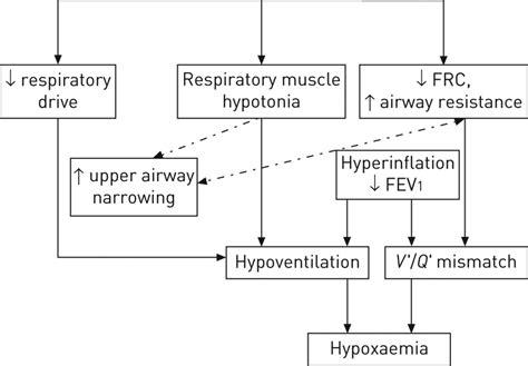 copd and sleep apnea picture 5