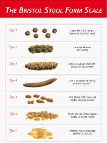 antibiotics for bowel& bladder picture 17