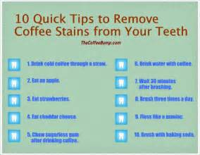 can tea stain your h science project information picture 5