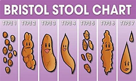 cause for oval shaped bowel movements picture 8