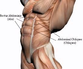 abdominal muscle strain picture 13