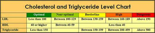 cholesterol ldl hdl triglycerides picture 7