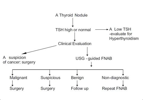 ayurvedic approach to thyroid nodules picture 7