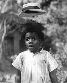 buckwheat and hair picture 10
