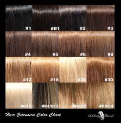 shades of brown hair color picture 10
