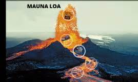 primary h eruption picture 13