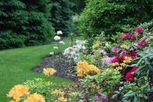 garden picture 6