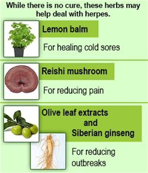 herbs to prevent herpes virus picture 10