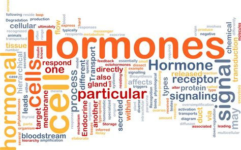 hormone replacement picture 5