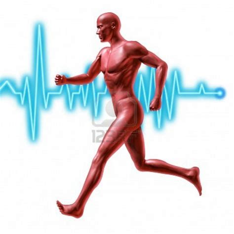 definition of muscle endurance picture 3