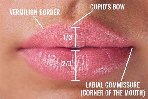 lip suspension no scar ny picture 7