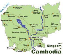 para que sirve la pastillas de garcina cambogia picture 2