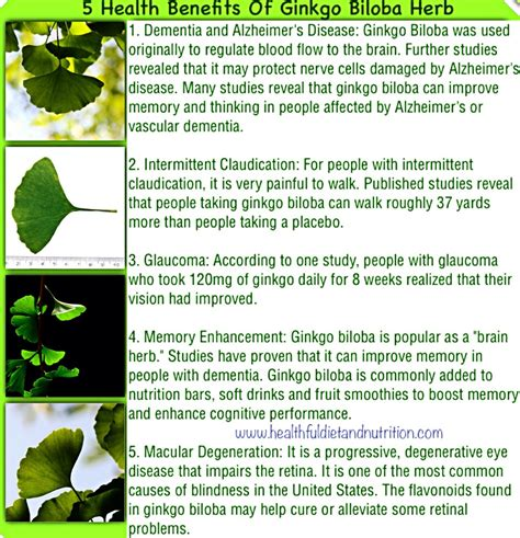 side effects of ginkgo biloba picture 5