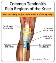 knee joint hot pain re picture 11