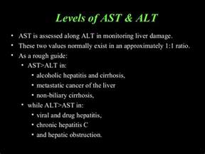 alt liver enzymes picture 10