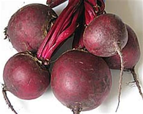 beets root increase vasodilation to penis picture 10
