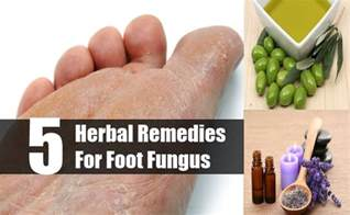 is there a home remedy for foot fungus picture 13