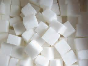 what are the effects of sugar on yeast picture 1