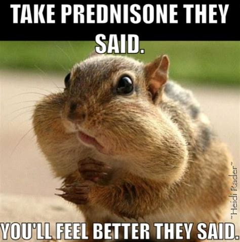 Prednazone and weight gain picture 3