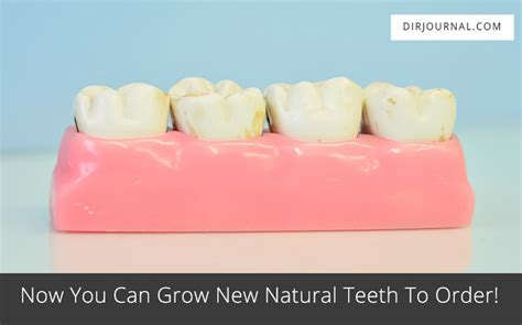 can natural teeth grow picture 1