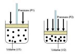 boils law picture 6