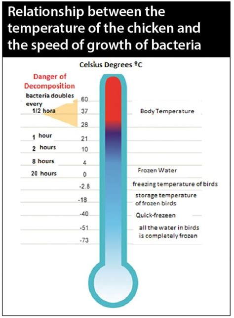 microbial growth occurred only at the temperatures picture 3