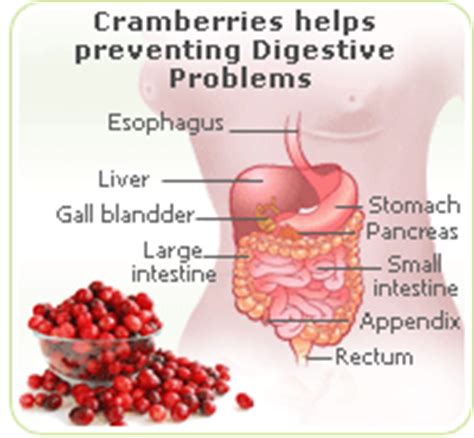 digestion symptoms picture 7