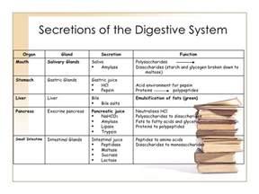 gastrointestinal secretions picture 3