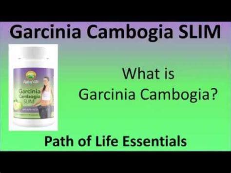 i want to order primalite garcinia cambogia picture 15