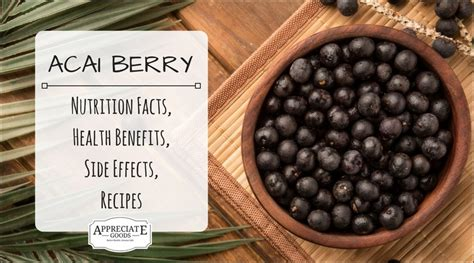 acai berry information picture 18
