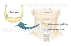 men's thyroid problems picture 7