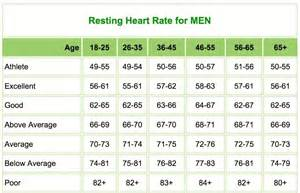 fat burning elite results picture 9