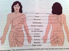 liver dysfunction symptoms picture 5
