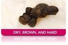 bowel movement pellets picture 11