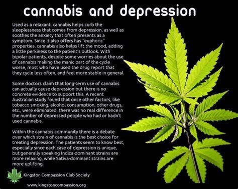 herbal marijuana picture 2