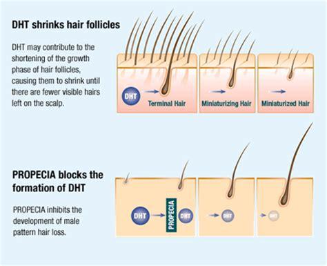 androgen receptor blocker hair loss picture 1