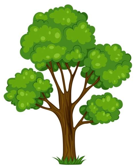 where can you buy the life tree purify picture 5