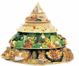 atkins diet food picture 17