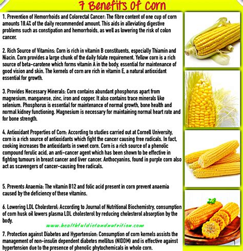 foods that cleanse your colon picture 14
