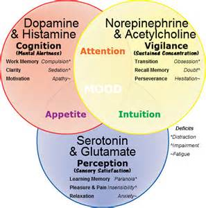 herbs to lower norepinephrine picture 3