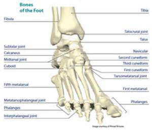 degererative joint disease picture 9